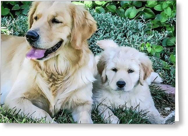 Mother And Pup Greeting Card