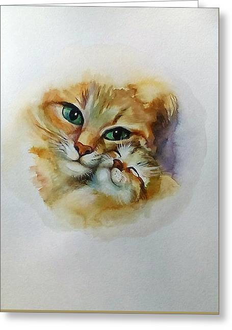Mother -cat Greeting Card