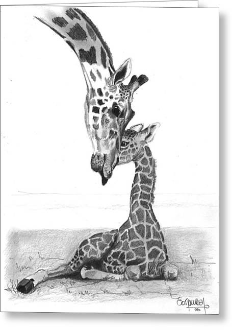 Love The Animal Drawings Greeting Cards - Mother Giraffe and The Baby Greeting Card by Eduardo Crowder