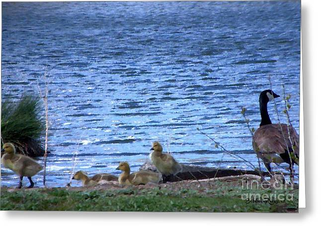 Mother Goose And Goslings Greeting Card by Bobbee Rickard