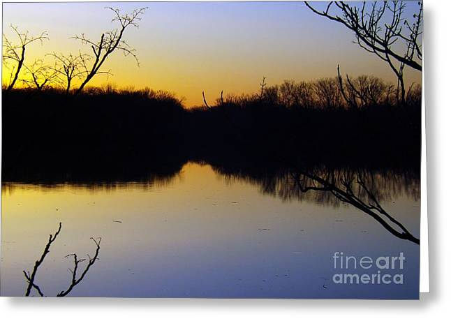 Mother Natures Glow Greeting Card by Robyn King