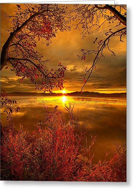 Mother Nature's Son Greeting Card by Phil Koch