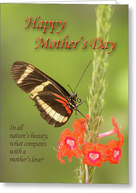 Mother's Day-butterfly Greeting Card