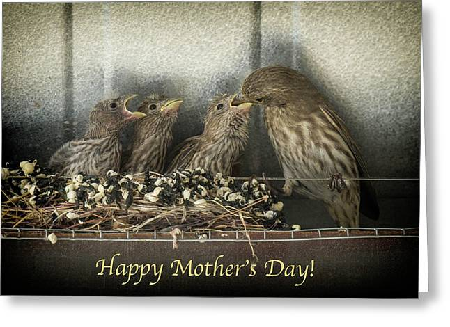 Mother's Day Greetings Greeting Card by Alan Toepfer
