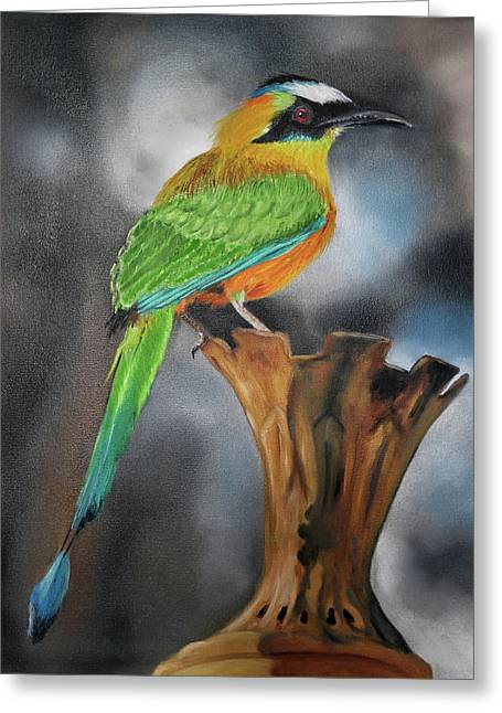 Motmot Greeting Card