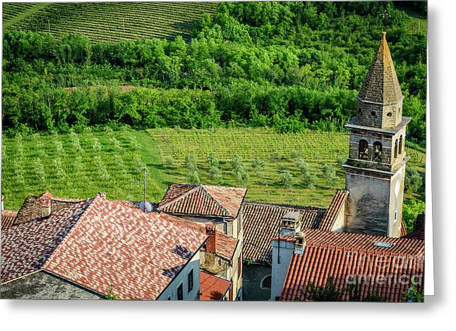 Motovun Istrian Hill Town - A View From The Ramparts, Istria, Croatia Greeting Card
