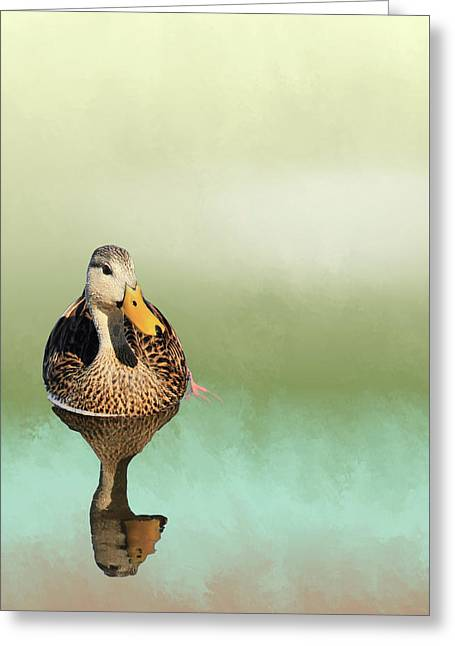 Mottled Duck Reflection Greeting Card by Rosalie Scanlon