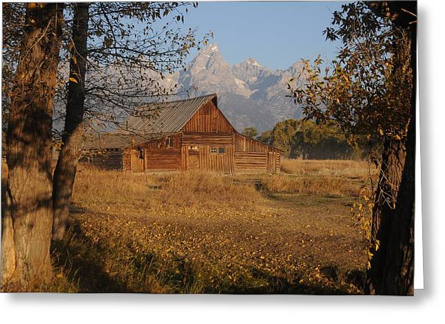 Moulton Barn With The Tetons Greeting Card