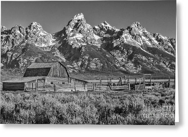 Moulton Cabin - Grand Tetons II Greeting Card by Sandra Bronstein