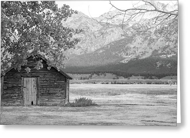 Greeting Card featuring the photograph Moulton Homestead - Granary by Colleen Coccia
