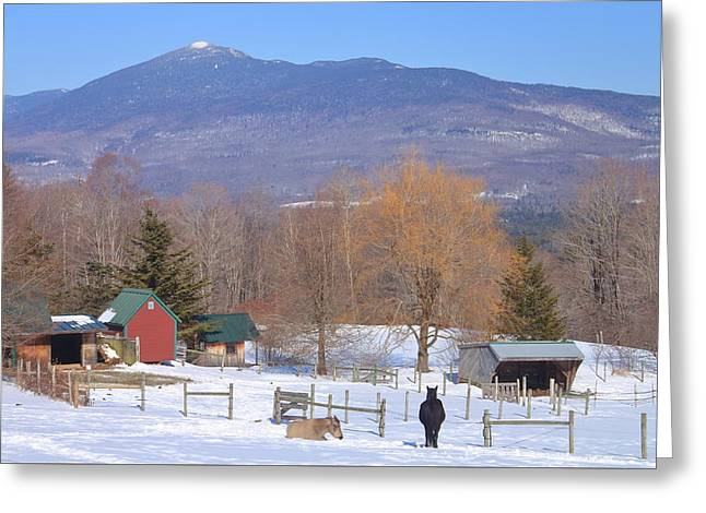 Mount Abraham And Winter Farm Green Mountains Greeting Card by John Burk