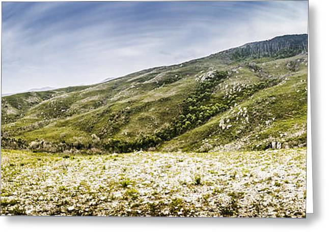 Mount Agnew Landscape In Tasmania Greeting Card by Jorgo Photography - Wall Art Gallery