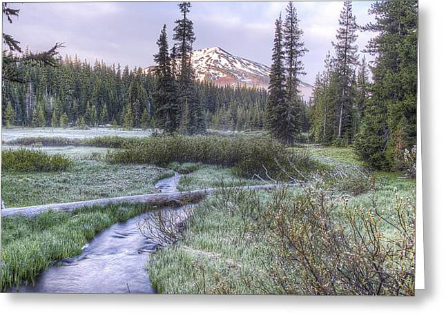 Mount Bachelor From Soda Creek At Dawn Greeting Card