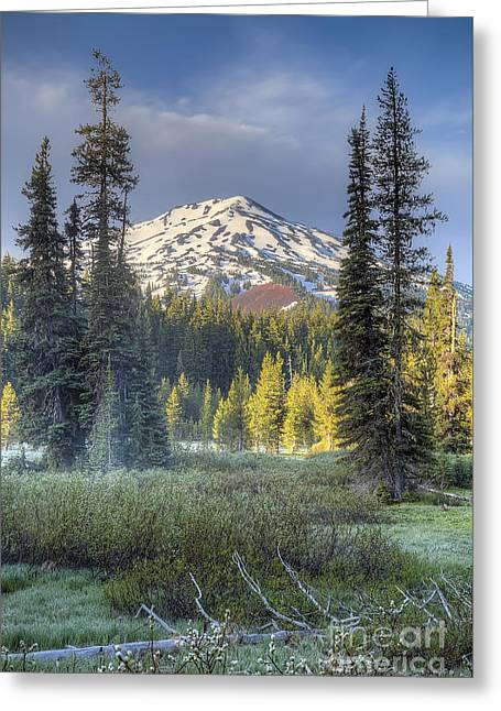Mount Bachelor From Todd Lake Greeting Card by Twenty Two North Photography