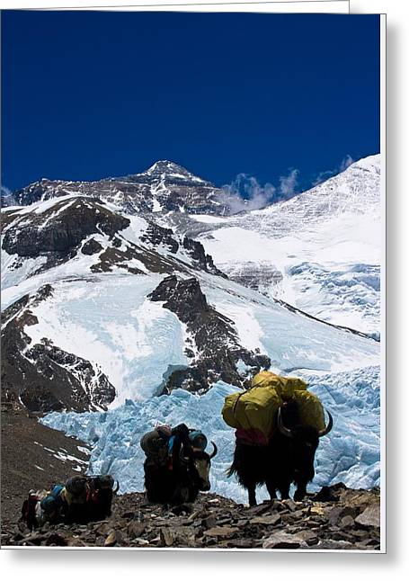Mount Everest Greeting Card by Gaurav Agrawal