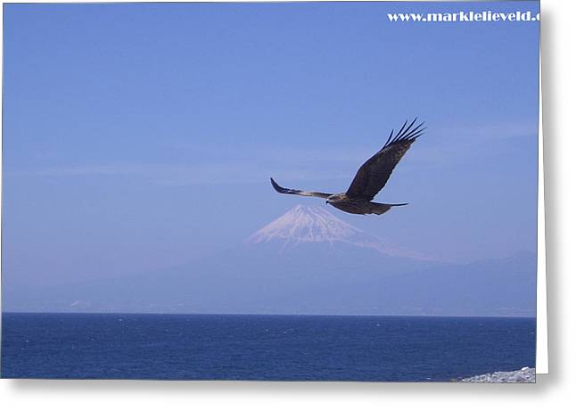 Mount Fuji With Eagle Greeting Card by Mark Lelieveld