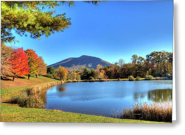 Mount Jefferson Reflection Greeting Card by Dale R Carlson