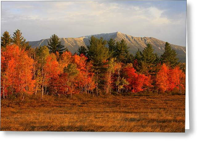 Mount Katahdin Autumn Morning Greeting Card by John Burk