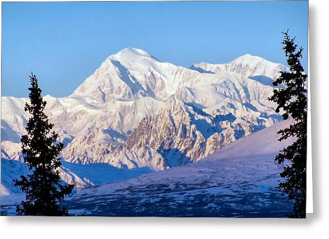 Mount Mckinley Greeting Card by Adam Owen