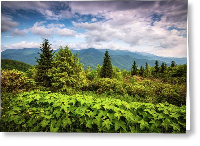 Mount Mitchell Asheville Nc Blue Ridge Parkway Mountains Landscape Greeting Card