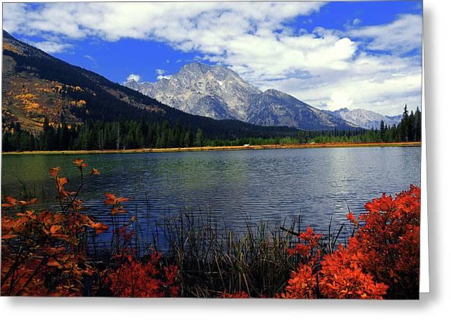 Mount Moran In The Fall Greeting Card by Raymond Salani III