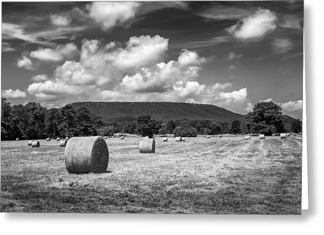 Mount Nebo In Bw Greeting Card