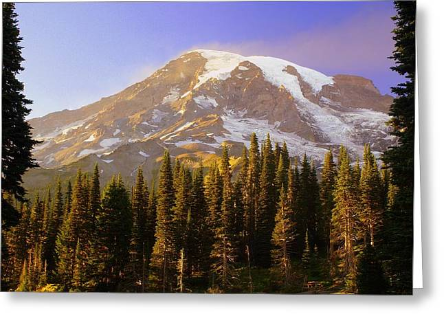 Mount Raineer 2 Greeting Card by Marty Koch
