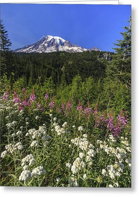 Mount Rainier Greeting Card by Adam Romanowicz