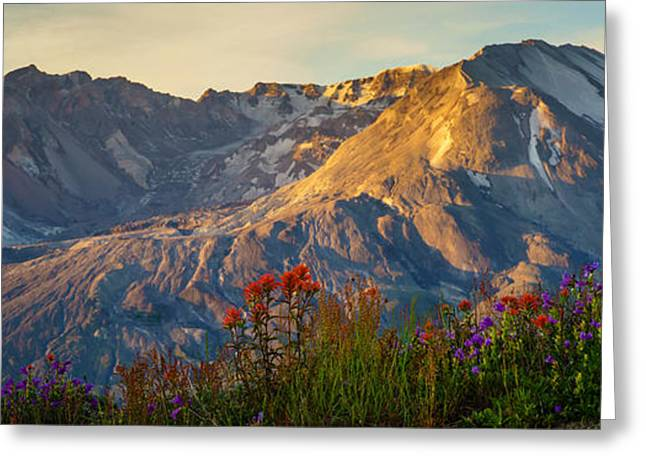Mount St Helens Spring Bounty Greeting Card by Mike Reid