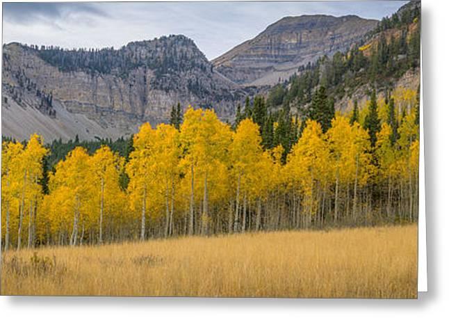 Mount Timpanogos Meadow In Fall Greeting Card