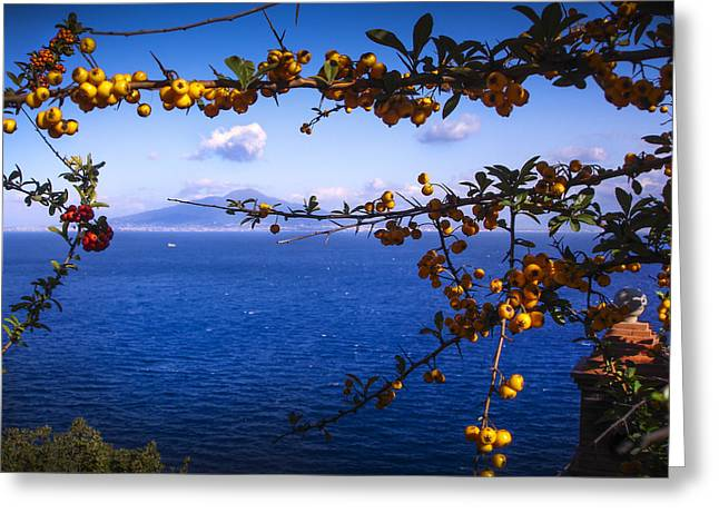 Mount Vesuvius From Sorrento Greeting Card