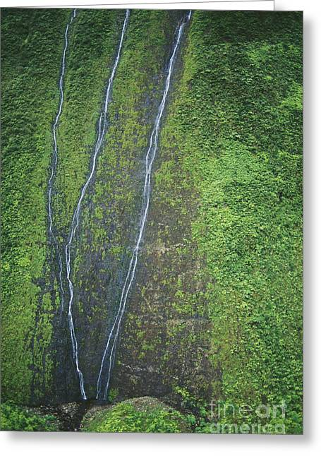 Mount Waialeale Greeting Card by William Waterfall - Printscapes