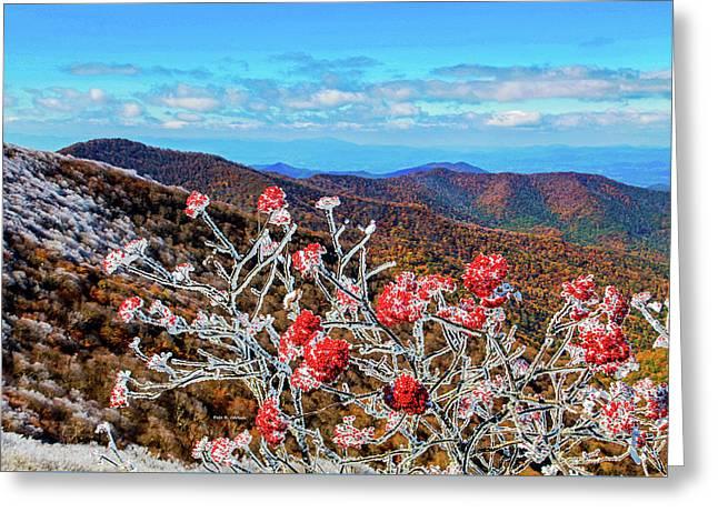 Mountain Ashe Greeting Card