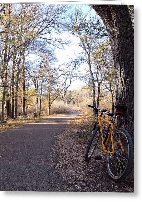 Mountain Bike Trail Greeting Card