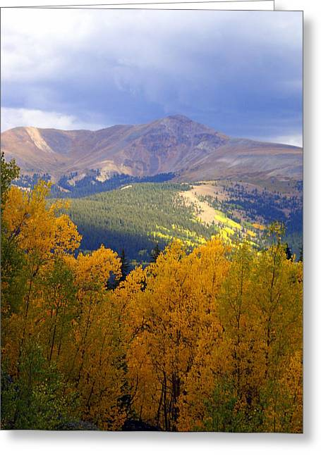Mountain Fall Greeting Card by Marty Koch