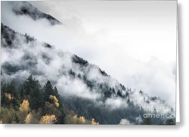 Mountain Fog Greeting Card by Jeffrey Dadson