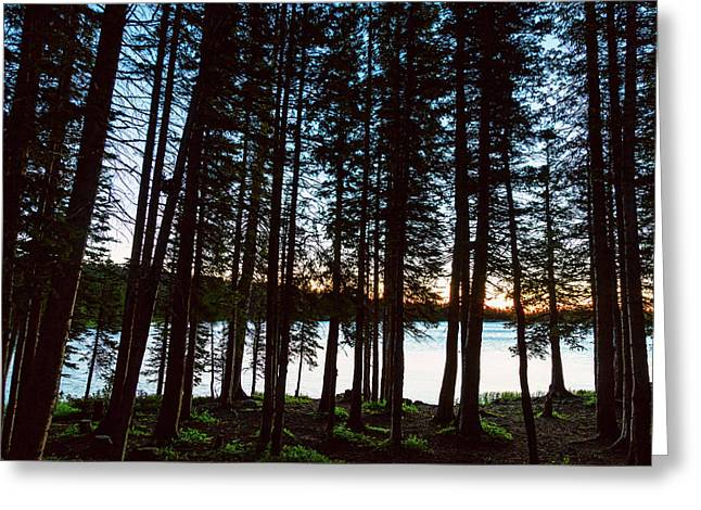 Greeting Card featuring the photograph Mountain Forest Lake by James BO Insogna
