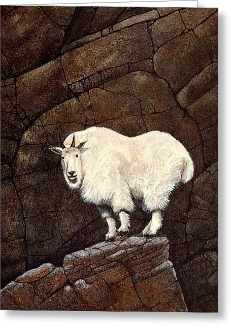 Mountain Goat Greeting Card by Frank Wilson