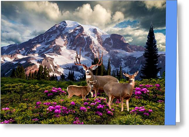 Mountain High Meadow Greeting Card