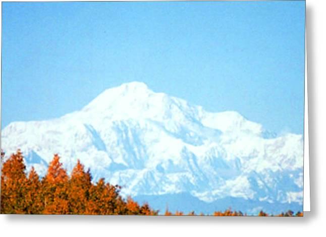 Greeting Card featuring the photograph Mountain by Judyann Matthews