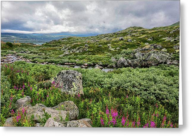Mountain Landscape Of Norway.      Greeting Card