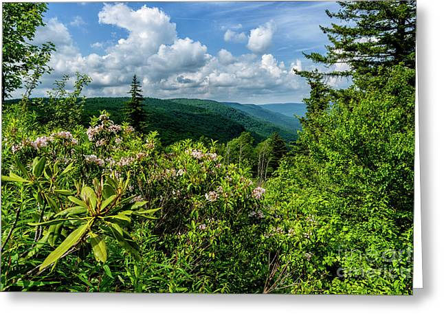 Greeting Card featuring the photograph Mountain Laurel And Ridges by Thomas R Fletcher