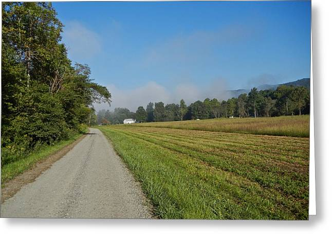 Mountain Mist On Country Road Greeting Card by Alan Olansky
