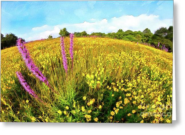 Greeting Card featuring the painting Mountain Of Summer Flowers In The Blue Ridge Ap by Dan Carmichael