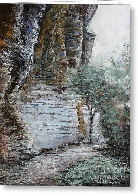 Mountain Pass Greeting Card by Todd A Blanchard