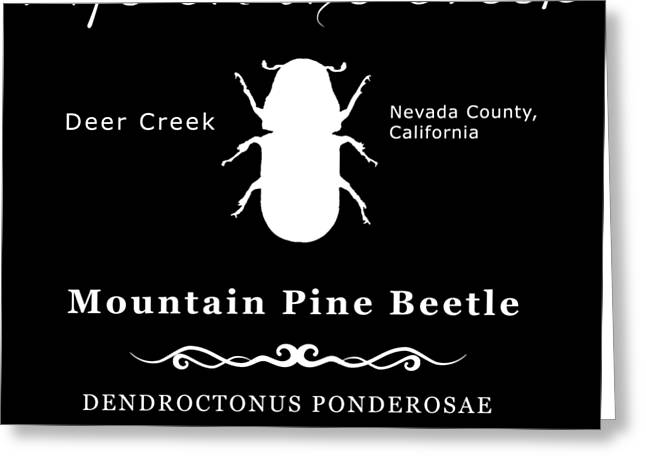 Mountain Pine Beetle White On Black Greeting Card