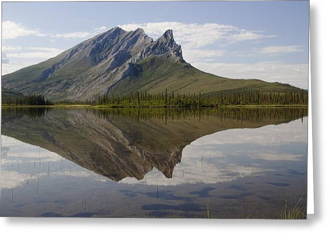 Mountain Reflection Greeting Card by Tim Grams