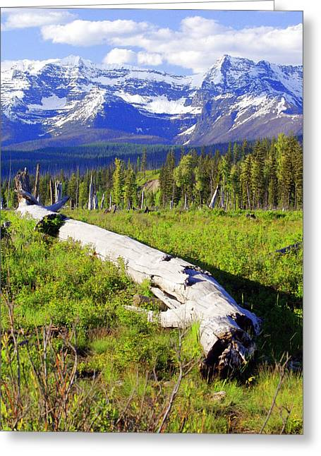 Mountain Splendor Greeting Card