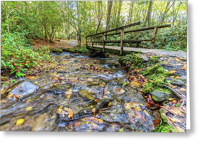 Mountain Stream #2 Greeting Card