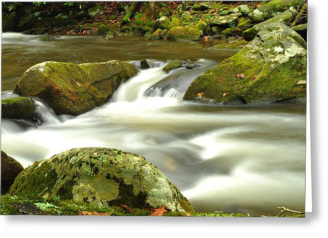 Mountain Stream 3 Greeting Card by William Jones